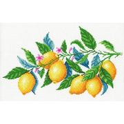 """Канва с нанесенным рисунком М.П. Студия """"Лимонная гармония"""""""