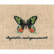 """Набор для вышивания крестом Le Bonheur Des Dames """"Бабочка Золото"""""""