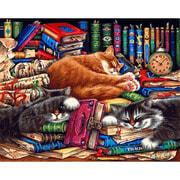 """Набор для раскрашивания Белоснежка """"Библиотека кошек"""""""