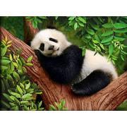 """Набор для выкладывания мозаики Алмазная живопись """"Сонный панда"""""""