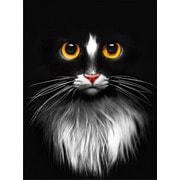 """Набор для выкладывания мозаики Алмазная живопись """"Черный кот"""""""