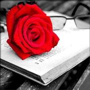 """Набор для выкладывания мозаики Алмазная живопись """"Роза и книга"""""""