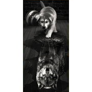"""Набор для выкладывания мозаики Алмазная живопись """"Волк внутри"""""""