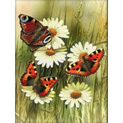 """Набор для выкладывания мозаики Алмазная живопись """"Бабочки"""""""