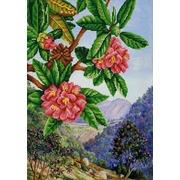 """Ткань с рисунком для вышивки бисером Конёк """"Экзотические цветы 1"""""""